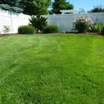 How to get your tenant to take care of the yard